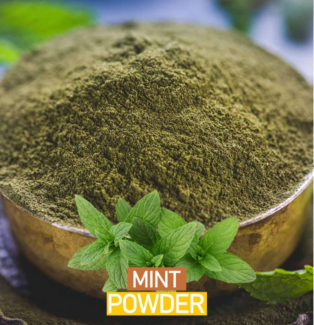 Mint Powder – a Remedy for Everyday Health Issues