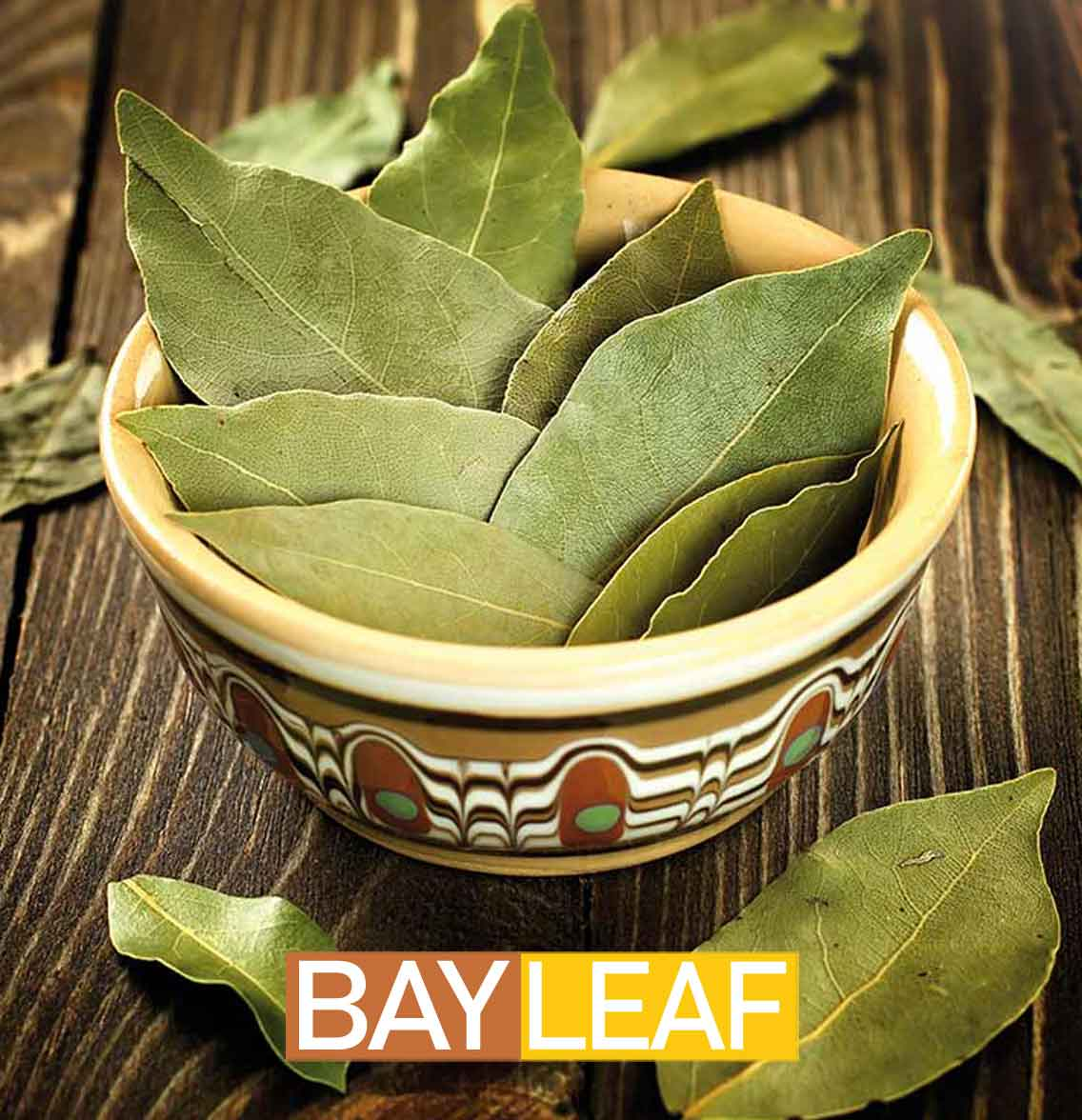 6 Amazing Health Benefits of using Bay Leaf