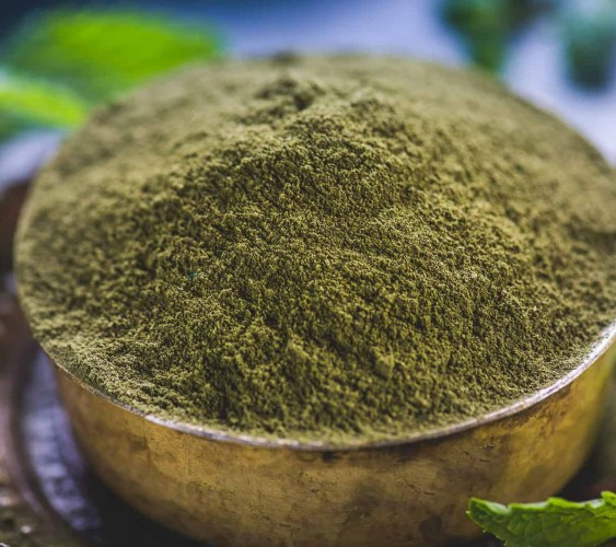 Pudina Powder Online - Buy Pure Herbs PUDINA (MINT) POWDER 100 GM