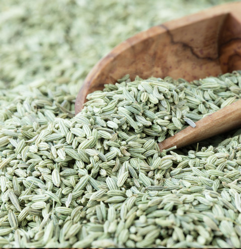 Buy Saunf Online - Fennel Seeds 50gm, 100gm Online at Low Price