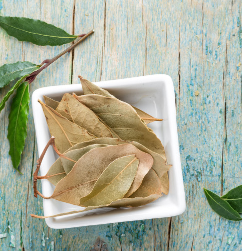 Tej Patta Price - Use of Tej Patta Spice for Weight Loss (Bay Leaf)